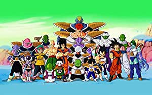 Dragon Ball Z All Characters Anime Poster 24x36