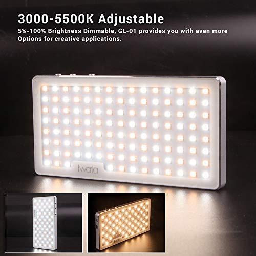 3000-5500K Adjustable 2800lux Alto Brillo Iwata GS-01 94LED Temperatura de Color Doble Mini luz led de Video Cuerpo de Aluminio con tr/ípode CRI96+ TLCI98+ Color Exacto