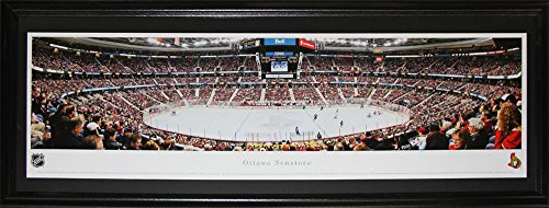 Ottawa Senators Scotiabank Place Panorama NHL Hockey Memorabilia Collector Frame ()