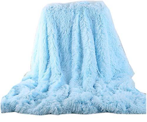 Soffte Cloud Super Soft Long Shaggy Warm Plush Fannel Blanket Throw Qulit Cozy Couch Blanket for Winter Light Blue(51x63)