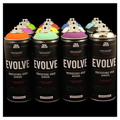 Evolve 12 pack, MTN, Montana, Belton & Molotow & Ironlak Spray Paint