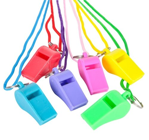 2'' NEON WHISTLE NECKLACE, Case of 432