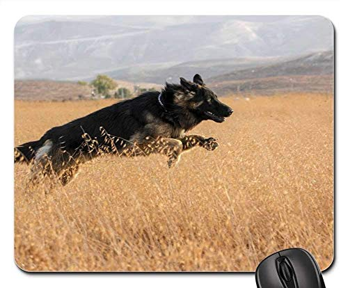 - Gaming Mouse Pads,Mouse mat,Dog Run Pet Animal Happy Play Happiness Playing