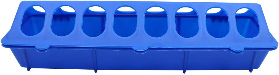 M.Z.A Poultry Ground Feeder Plastic Flip-Top 11.8 Birds Poultry FeedingTrough with hole/Bird/Food box drinking bowl multiple holes for /Animal Farm Tool Case Blue