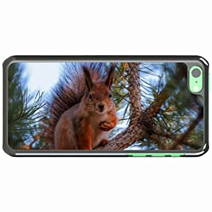 iPhone 5C Black Hardshell Case squirrel pine branch Desin Images Protector Back Cover by runtopwell