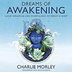Dreams of Awakening
