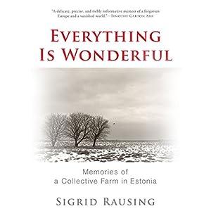 Everything Is Wonderful Audiobook