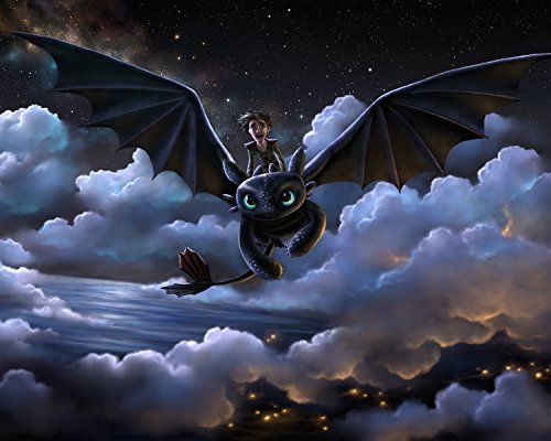 How to Train a Dragon Poster High Quality Movie Wall Art 16x20 Inches