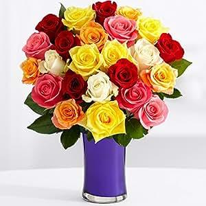 ProFlowers - Two Dozen Rainbow Roses (with FREE glass vase) - Flowers