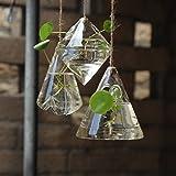 Fashionstorm Irregular Geometric Vase Glass Vessel Hanging Planters Flower Pots/water Planter Vase Set Including 3 Pieces