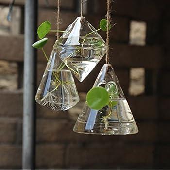 Fashionstorm Irregular Geometric Vase Glass Vessel Hanging Planters Flower  Pots/water Planter Vase Set Including
