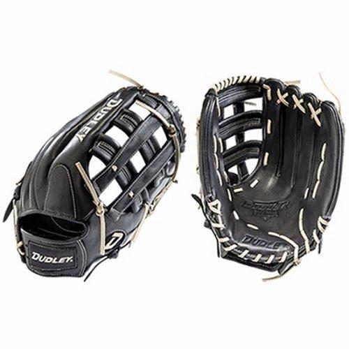 wpitch Softball Glove (13