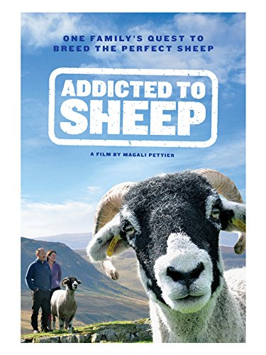 Addicted to Sheep ()