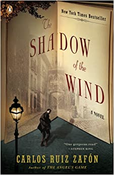 Image result for the shadow of the wind cover