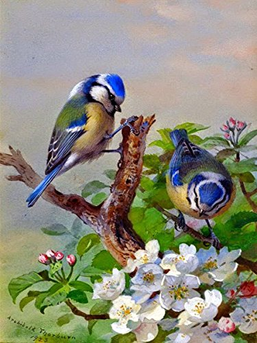 Flekman Art Titmouse on Tree by Archibald Thorburn Accent...