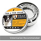 Flea Collars For Dogs - Best Reviews Guide