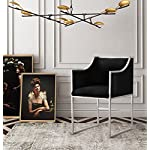TOV-Furniture-The-Atara-Collection-Living-Room-Velvet-Upholstered-Accent-Chair-With-Stainless-Steel-Base-Black