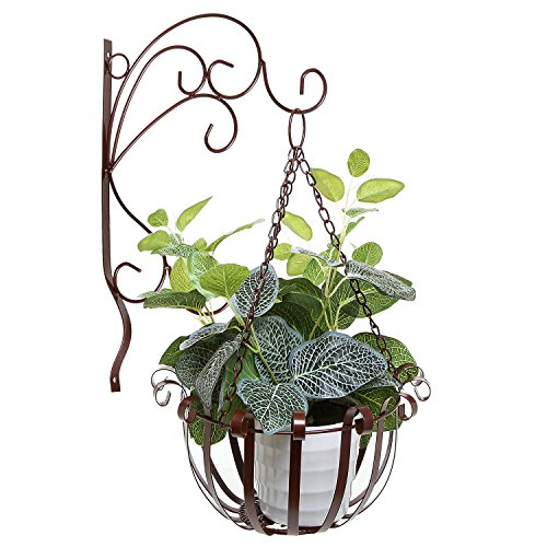 Outdoor Planter Hanging Mounted Scrollwork