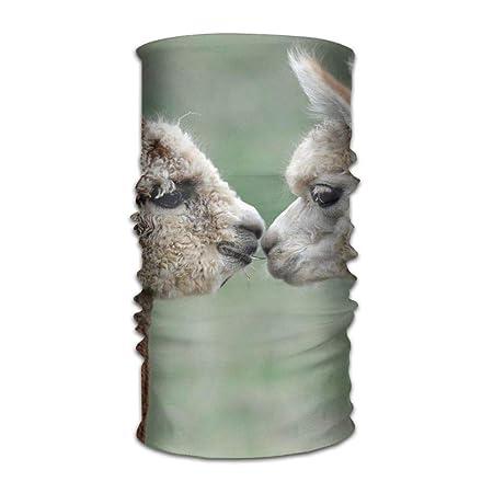 Llama Lovers Kiss Cinta Original con multifunción Deportes y ...