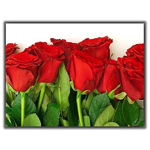 Tia Creation Red Rosed For Love Symbole 0692 Poster On Matte Photographic Paper 32Inch X 24Inch