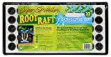 Super Sprouter 714161 55 count Root Raft Floating Plug Tray