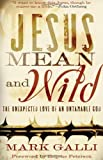 By Mark Galli - Jesus Mean and Wild: The Unexpected Love of an Untamable God (2006-07-16) [Hardcover]
