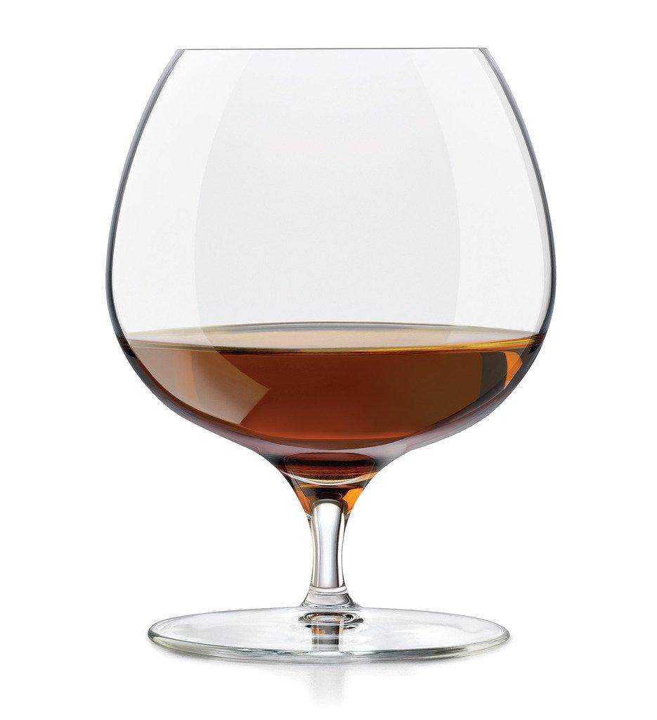 Libbey Signature Kentfield 4-piece Brandy Glass Set 9132/NLS4