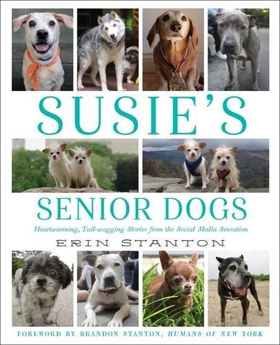 Susie's Senior Dogs book cover