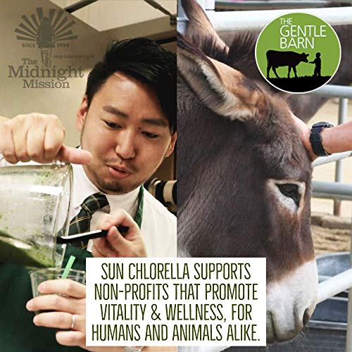 Sun Chlorella- Sun Wakasa Gold with Chlorella Growth Factor- Support Your Health On A Cellular Level (17 Fluid Ounce) by Sun Chlorella (Image #5)