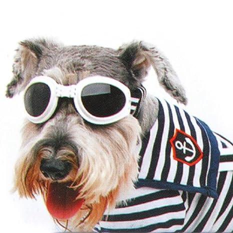 Perro de mascota perrito de sol ULTRAVIOLETA antiniebla correa Gafas tamaño pequeño: Amazon.es: Hogar