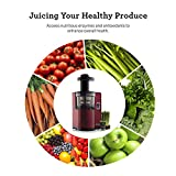 Omega Vertical Slow Masticating Juicer Makes