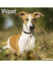Whippet - Kleine Englische Windhunde 2022 - 16-Monatskalender: Original Avonside-Kalender [Mehrsprachig] [Kalender]: Original BrownTrout-Kalender [Mehrsprachig] [Kalender]