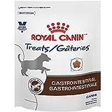 Royal Canin Gastrointestinal Canine Treats, 17.6 Oz. For Sale
