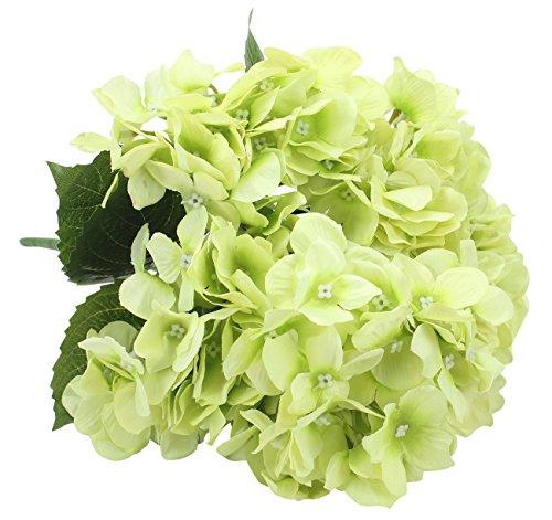 Duovlo Artificial Silk Hydrangea Flower with 6 Heads Flower Bunch Bouquet Home Wedding Garden Floral Decor (Green)
