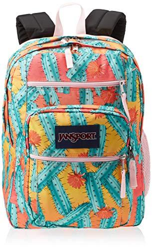 JanSport Big Student 34 Ltrs Laptop Backpack (CACTUS FLOWERS)