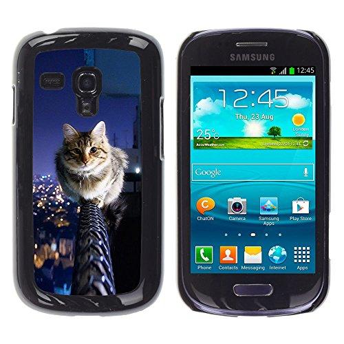 STPlus Gato en una caja Animal Carcasa Funda Rigida Para Samsung Galaxy S3 Mini #27