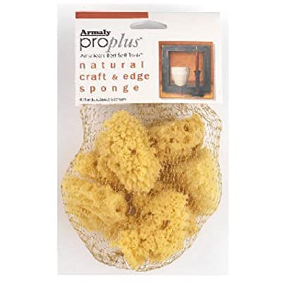 ProPlus Natural Craft and Finishing Sponge: Home & Kitchen