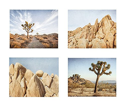 Southwest Wall Art, Joshua Tree Photography, California Desert Pictures, Palm Springs Decor, Set of 4 8x10 Matted Photographic Prints 'Joshua Tree' by Offley Green