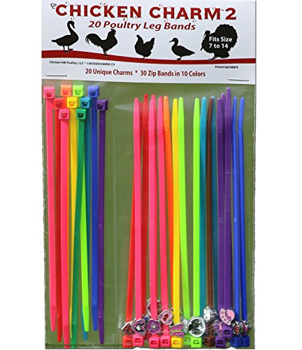 SALE!! 20 Chicken Charm ™ 2 Poultry Leg Bands - Fit Sizes 7 to 14