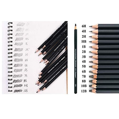 Sketching Pencil Set, DDream 14 Pcs Drawing Pencil Sketch Pencils Set for Artists Adults Children Include 12B 10B 8B 7B 6B 5B 4B 3B 2B B HB 2H 4H 6H Graphite Professional Sketch Pencils Set