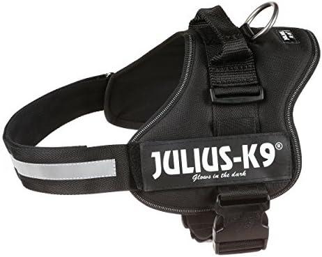 Julius-K9, Talla 1, 66-85 cm, Negro: Amazon.es: Productos para ...