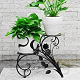 GIG Two Tiered Decorative Display Potted Plants Shelf Without Metal pots, Flowers Stand, Planter Stand, Metal Storage Rack Shelf, Stand for Balcony (43x26x41cm)
