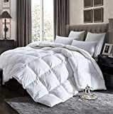 Luxurious California King Size Goose Down Comforter All Seasons Duvet Insert 1200 Thread Count 750+ Fill Power 70 oz Fill Weight 100% Egyptian Cotton ( California King, White )