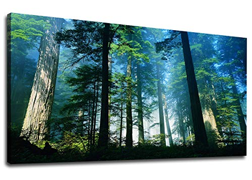 Art Forest Canvas - Green Blue Forest Wall Art Canvas Art Trees Foggy Woods Morning Sun Shine Large Nature Picture Artwork Wall Decor for Home Office Decorations 20