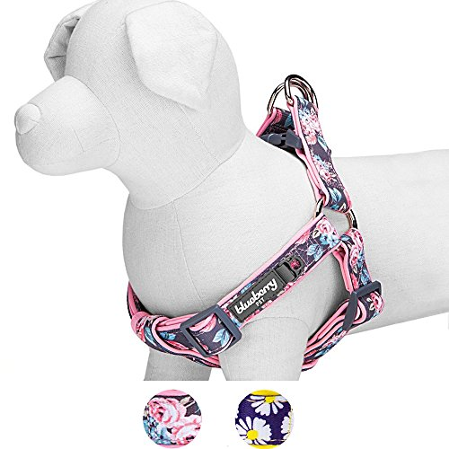 Blueberry Pet 2 Patterns Soft & Comfy Step-in Rose Flower Prints Girly Padded Dog Harness, Chest Girth 20