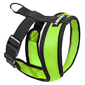 Gooby - Comfort X Head-in Harness, Choke Free Small Dog Harness with Micro Suede Trimming and Patented X Frame, Green, Small