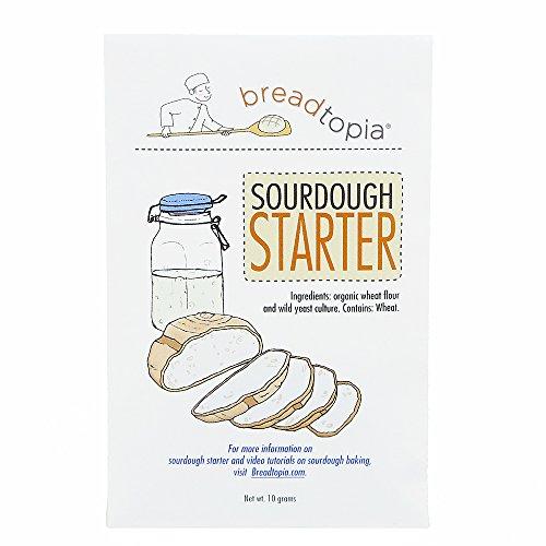 dehydrated sourdough starter - 5