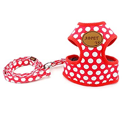 SMALLLEE_LUCKY_STORE New Soft Mesh Nylon Vest Pet Cat Small Medium Dog Harness Dog Leash Set Leads S M L