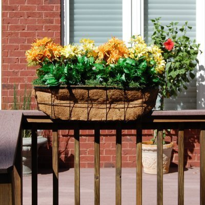 Newport Over the Rail Planter 24In 2In X 4In Rail by Griffith Creek Designs