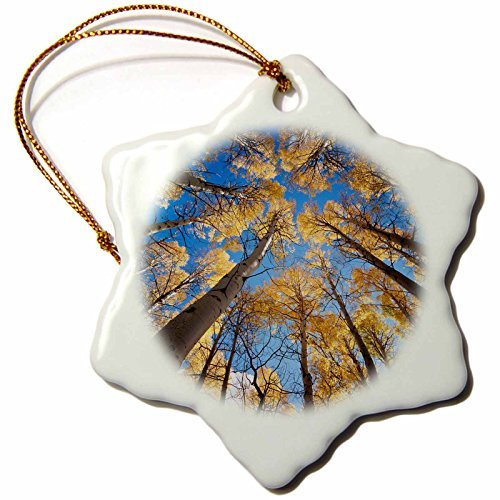 Ornaments to Paint Danita Delimont - Sierra Nevada - Inyo National Forest, autumn colors of aspen trees -